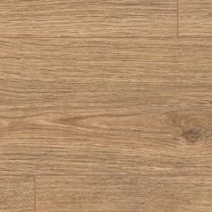 Cortina Oak