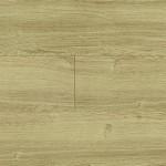 Coyote Oak